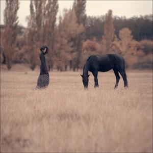 печальная черная лошадь