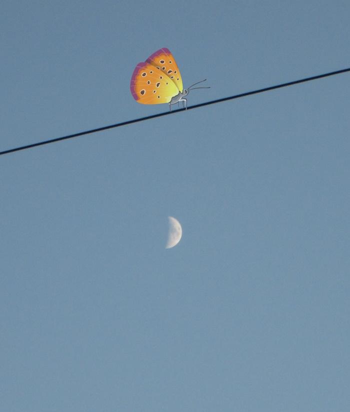 над луной